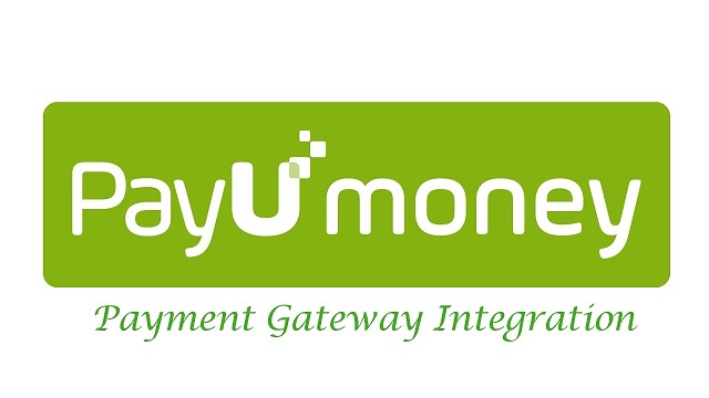 Online Payment Solution Partner